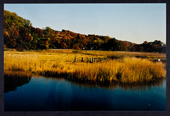 Cold Spring Harbor, Autumn 1999 - Photographed by Art Brings (CSHL Archives) Tags: cshl