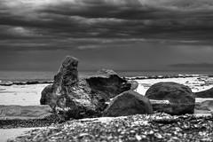 Passing storm (BAN - photography) Tags: sea shells storm beach clouds sand rocks driftwood shore beachfront darkclouds