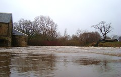 The weir, Pollock Park (adm cro) Tags: whitecartwater spate highflow