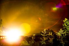 013 (Jsdeitch) Tags: park trees light 3 tree canon stars lights star colorado head mark f14 iii 14 headlights flare l 5d headlight 24mm ef estes 14l f14l 24l 24mml 5d3 5diii