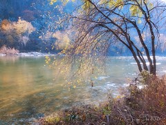 Evening Song (JacquiTnature) Tags: autumn light fall nature river peace wv harpersferry tranquil shenandoahriver bestcapturesaoi bestevergoldenartists creativephotocafe