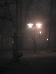 Romantic ... (Rafa Piekarczyk) Tags: park fog night canon explore romantic noc mga tarnw parkstrzelecki regionwide