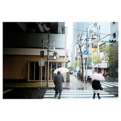 (Kerb ) Tags: japan tokyo december  nippon  analogue kerb 2011 201112 konicac35effilm030 4764 kerbwang konicac35efefinitiuxisuper200 47640012
