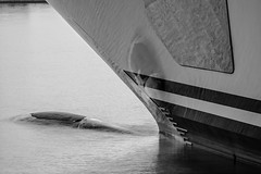 El Topaz en la marina Port Tarraco - Puerto de Tarragona - Bulbo de proa semi-sumergido y compuertas del ancla (Joaquim F. P.) Tags: marina germany mediterranean yacht vessel catalunya tarragona mega topaz lujo yate jfp costadorada costadaurada goldencoast tgn  lrssen ciutatdetarragona superyate porttarraco embarcacindeplacer luerssen13677 mediterraneangoldencoast