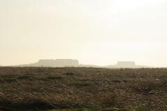 Zurck von dort (im_fluss) Tags: sun mist fog backlight nebel feld meadow wiese gras sonne tropfen gegenlicht huser hallig grde