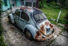 A Dilapidated Beetle ! (tamahaji) Tags: old classic volkswagen beetle rusty 11 restricted hdr dilapidated