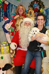 IMG_0083 (PMC Fresno) Tags: santa pet photos center medical spa pmc