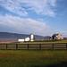 a pretty morning farm