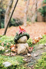 autumn in Kyoto (motty) Tags: autumn film leaves japan 35mm temple moss kyoto natura 1600 ohara sanzenin classica natura1600 naturaclassica