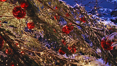 (blogspfastatt (+3.000.000 views)) Tags: light snow color rouge navidad nice colours zimmer hiver noel alsace lumiere carnaval neige paysage merrychristmas landschaft couleur christmasornaments marchedenoel snieg pfastatt marchedenoelalsacien blogspfastatt