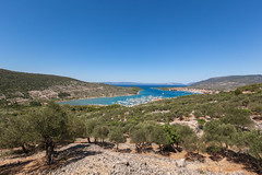 Cres Town from above (Tim Ertl) Tags: cres above boats from hillside olive port rocks sailing town trees