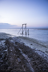 _AUS2546LRF (Alessandro Della Maggiora) Tags: alessandro della maggiora alessandro maggiora alexdm tramonto sunset australia heron island isola mare nikon d800 2470 sea ocean travel travelphoto travelphotography