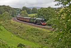 """LNER A3 Class 4-6-2 No 60103 Flying Scotsman in charge of """"The Waverly"""" on the outward leg approaching the How Mill level crossing on the Newcastle to Carlisle Line (penlea1954) Tags: lner a3 class 462 no 60103 flying scotsman the waverley how mill newcastle carlisle line uk steam railway england outdoor railroad vehicle ner cumberland northumberland trains train transport rail locomotive locomotives loco engine pacific sir nigel gresley brampton"""