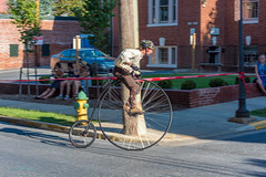 Highwheel Race (8-13-16)-242 (nickatkins) Tags: bike bikes biker bikers bikerace bikeraces bikeracing cycling cyclist race bicycle bicycling bicyclist highwheel old oldtime frederick historic