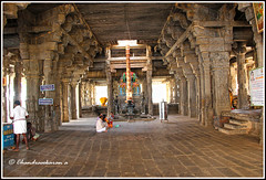 6391 - Srimushnam  Temple (chandrasekaran a 40 lakhs views Thanks to all) Tags: srimushnam sorgavasal india tamilnadu traditions vaishnavites varagaswami culture architecture temples sculptures gopurams tower buildings structures thenkalai