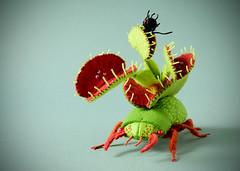 Venus Anttrap Beetle (hine) Tags: floraatland hinemizushima art landgallery exhibition insect bug plants card handmade toy felt feltsculpture