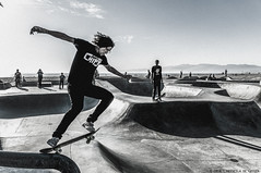 Skateboarder at Venice (Priscila de Cássia) Tags: skate skateboard skateboarder skateboarding sport sportsphotography venice venicebeach california losangeles scenery nikon nikond90 movement unitedstates guy portrait