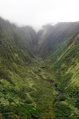 Not a human-friendly hiking route (mollycaitlin) Tags: hawaii kailunakona helicopter helicopterride gully