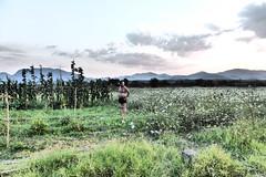 Thenasis (JulianaHahn) Tags: mad man picking farming village