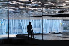 mirror screen (davizorzi) Tags: skate skateboard sk8 black blue water glass mirror barcellona barcelona bcn spot forum espana spagna spain trick