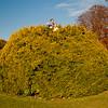 Treetop Suprise (juliereynoldsphotography) Tags: autumn trees people liverpool croxtethpark juliereynolds
