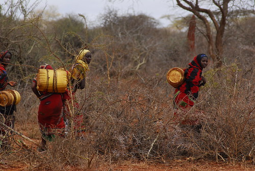 Women and children carrying jerrycans filled with water on their backs-Melbana Village-Oromia Region