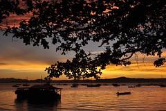 """amando muito, muito! ficamos s/ palavras"" - Ana Hatherly, escritora portuguesa. (Ruby Augusto) Tags: sunset clouds boats bay barcos branches silhouettes hills nuvens galhos montanhas baía silhuetas pôrsosol brasilbrazil santoantoniodelisboa southernbrazil brasilemimagens"