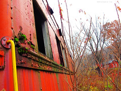 Abandonment - The Ghost Trains:  Cooperstown Junction (rafalweb (moved)) Tags: railroad red green abandoned colors yellow train canon moss rust decay rusty gimp powershot rusted rusting unused g12 passengercar photoscape cooperstownjunction