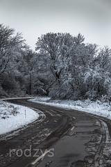 zima 2012-100.jpg (rodzys) Tags: park winter zima woda snieg