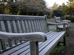 FROSTY BENCH (Adam Swaine) Tags: county uk trees winter england green london english beautiful canon bench wooden kent flora frost britain parks east dulwich 2012 counties naturelovers 35mmf2 londonparks thisphotorocks adamswaine mostbeautifulpicturesmbppictures wwwadamswainecouk localfrost