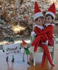 """Little Elf """"Excuse me, Ahem, We have a special delivery for one Allister Elf"""" (Lawdeda ) Tags: from christmas boy girl make this is do some it special shelf elf will tiny be there what delivery and oh sure he foreign total ot gets shenanigans allister elves blackmail nooo not"""