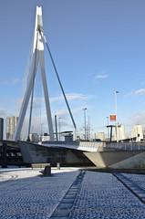 Rotterdam (Erwin van Maanen) Tags: haven netherlands architecture port puerto rotterdam nederland holanda hal kopvanzuid hotelnewyork architectuur wilhelminapier katendrecht