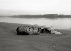 Boat, Columbia River, Oregon (austin granger) Tags: film metal oregon boat washington decay evolution shipwreck columbiariver worm flotsam creature mountsthelens artifact ribbed largeformat humans sauvieisland spermwhale deardorff austingranger