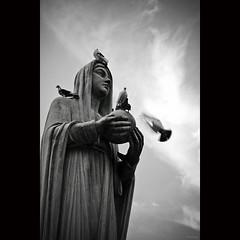 Queen of Peace, pray for us (-clicking-) Tags: lighting light sky blackandwhite bw monochrome birds statue clouds skyscape fly flying blackwhite catholic peace maria faith mary pray praying peaceful vietnam saigon doves nocolors queenofpeace