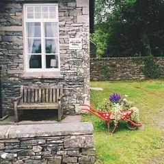 g a t h e r i n g  s p o t  #england #windemere # explore #travel #village #loveliness #nature #beauty (Julesy Mac) Tags: england windemere travel village loveliness nature beauty