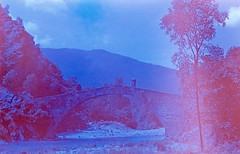 . (P F M - Premiata Fotograferia Mmhhhhh) Tags: film expired analogue 35 mm 135 1992 kodak vericolor slide so279 premiatafotograferiammhhhhh fujica stx1 xfujinon 55 122