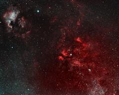 H-alpha Perseid passing through North America Nebula and Sadr region: Bi-colour version (Physicus) Tags: astrophotography ngc7000 sadr meteor perseid halpha ha atik460 atik baader sky night skyatnight star narrowband crescentnebula cygnus