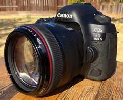 Canon EOS 5d mark iv with 85mm f1.2L II (Scriv07) Tags: 8512 85mmf12lii 85mm canon canon5dmarkiv
