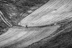 Prati (marcolef) Tags: colore digitale miniviaggi mlf montagna natura tipo umbria supporto modocolore dgt col campagna castelluccio