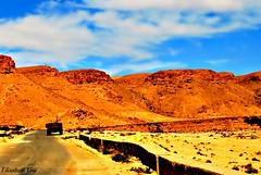 Djerba 2010 151-1 (Elisabeth Gaj) Tags: djerba2010 elisabethgaj tunisia afryka travel natur nature landscape