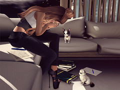 Snapshot of a past sadness. ( l l) Tags: moda addams blueberry kccouture nocabide lassitudeennui alchemy itdoll sl secondlife avatar cute fashion girl cat dog pet sadness cry crying