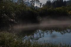 1Z1A9192.jpg (deargdoom57) Tags: zelenci slovenia lake lakezelenci kranjskagora jesenice si