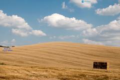 Landscape of Val d'orcia (P.Ebner) Tags: landscape paesaggio toscana val orcia valdorcia field campo italia italy tuscany siena
