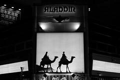 Desert in Shinjuku (hidesax) Tags: desertinshinjuku aladdin camels ad wall pachinko shinjuku tokyo japan hidesax leica x vario