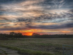 Evening Sky HDR (davidntaylor1968) Tags: sunset tranquilscene scenics landscape tranquility tree beautyinnature field orangecolor sky cloudsky nature cloud grassy nonurbanscene cloudy multicolored dramaticsky majestic outdoors hdr hdrphotography showcaseseptember photography