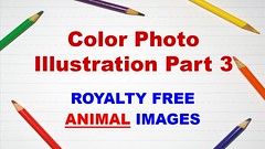 Color Photo Illustration Part 3 by Photo Garage - Royalty Free Animal Photo Album (photo_garage) Tags: photography photo image snap photographer garage