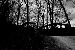 green valley road (TallShadowsPhotography Film / Digital) Tags: bridge blackandwhite nikon iron highcontrast indiana browncounty d300