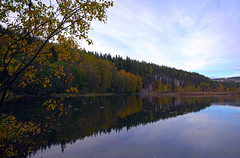 Autumn Lake... Late Afternoon (PuffinArt) Tags: autumn trees lake fall norway lago norge nikon sigma noruega puffinart 1020 outono rvores lier d300 vandamalvig
