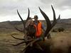 Montana Elk Hunt - Bozeman 4