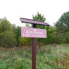 Bialowieza National Park